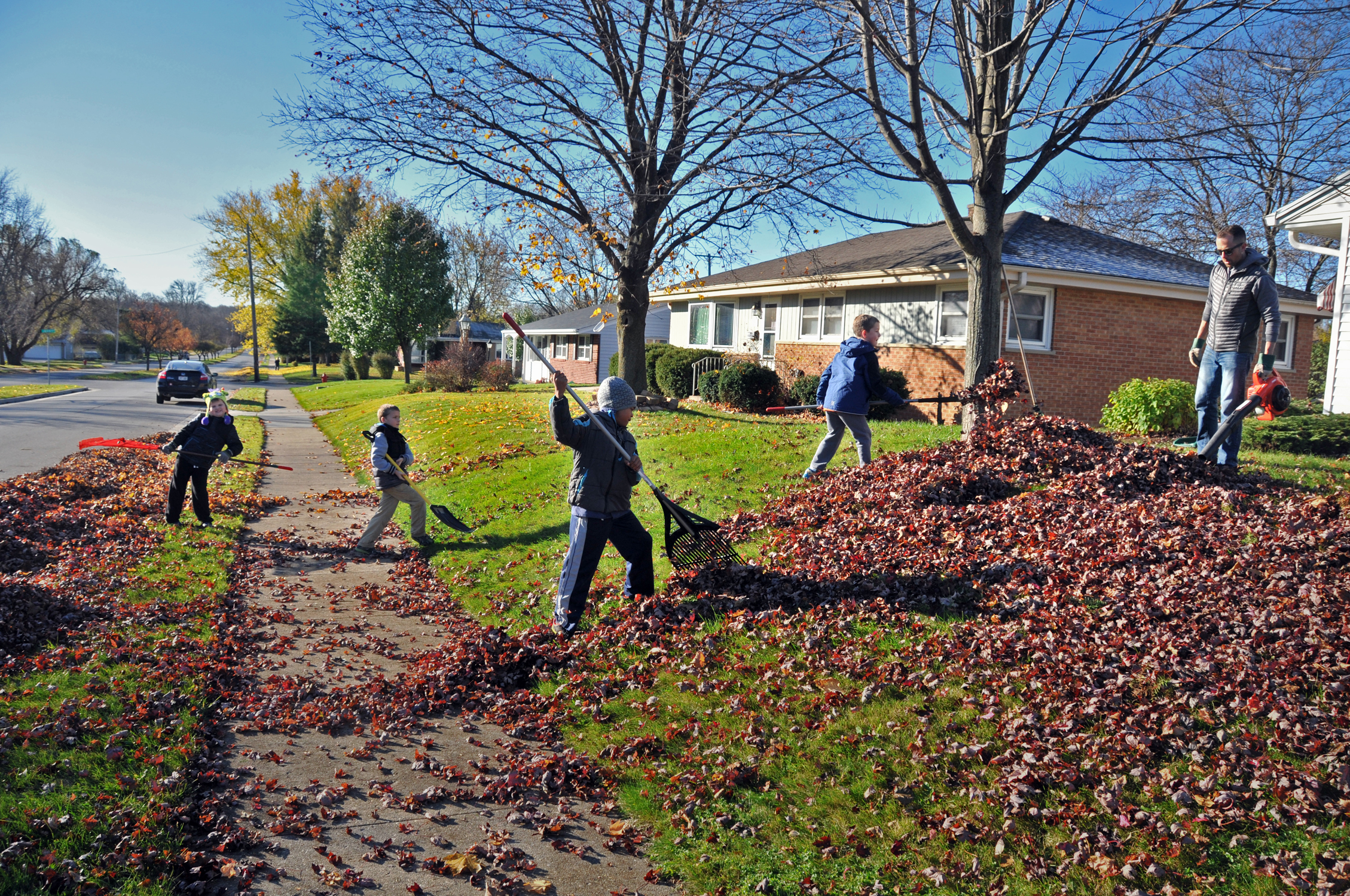 Leaf Raking for Seniors